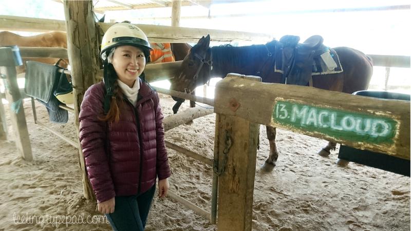 11-Numinbah-Horse-Riding